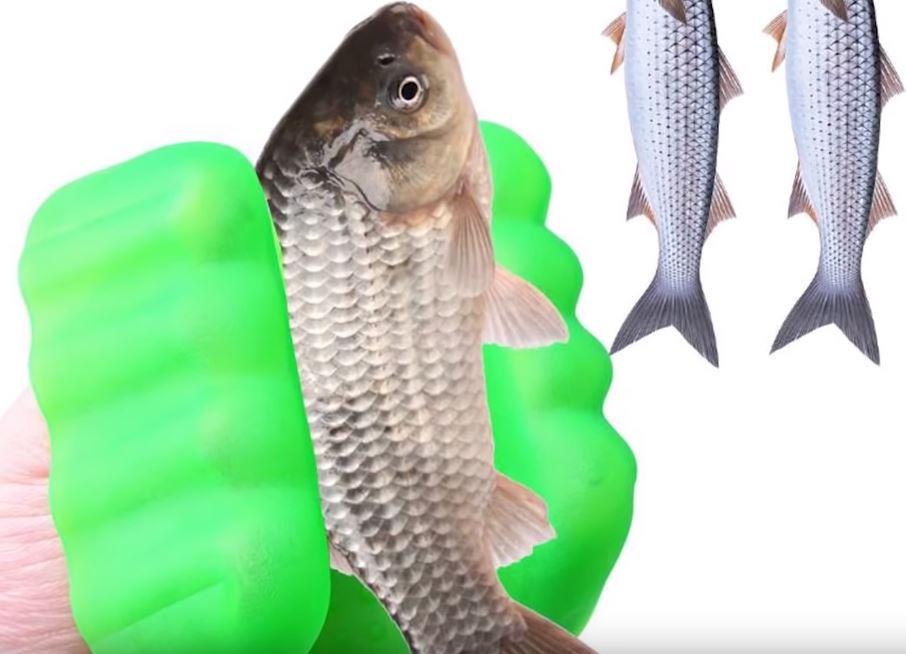60 лучших товаров для рыбалки с алиэкспресс на 2019 год