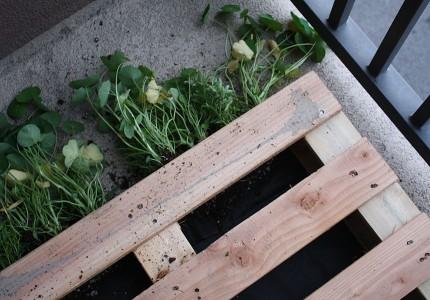 Как сделать поддоны для сада