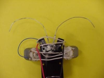 Робот-жук своими руками