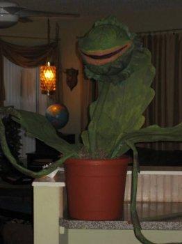 Растение-людоед в виде папье-маше