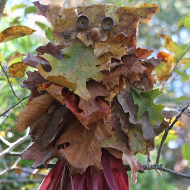 Сова из осенних листьев