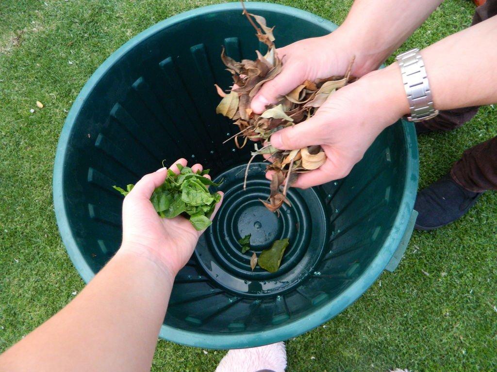 Органический компост своими руками