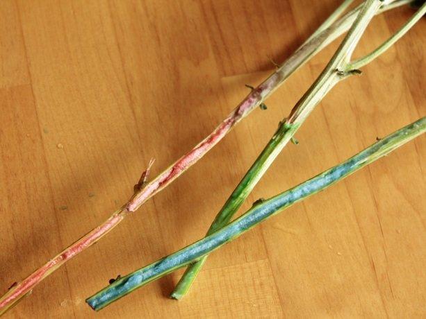 Как раскрасить лепестки цветов