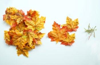 Чаша из осенних листьев своими руками