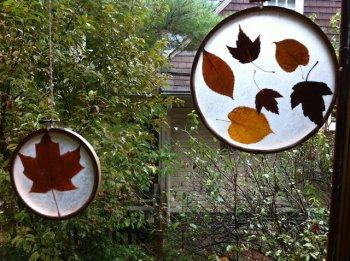 Витраж из осенних листьев своими руками