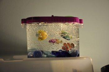 Декоративный аквариум своими руками