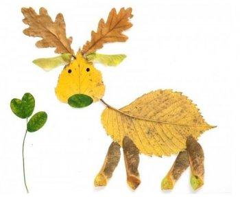 Аппликации из осенних листьев для детского сада
