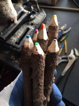 Карандаши из веток своими руками