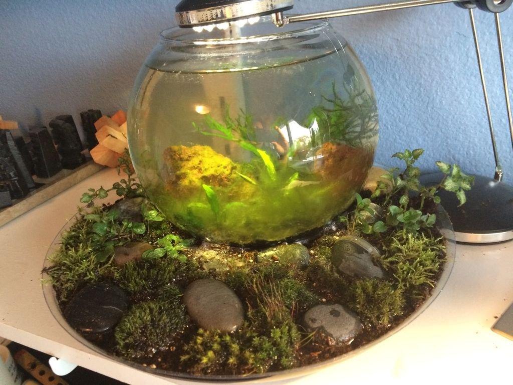 Поддон аквариума своими руками фото 832