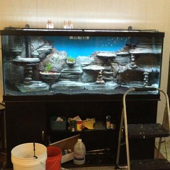 3D-фон для аквариума своими руками