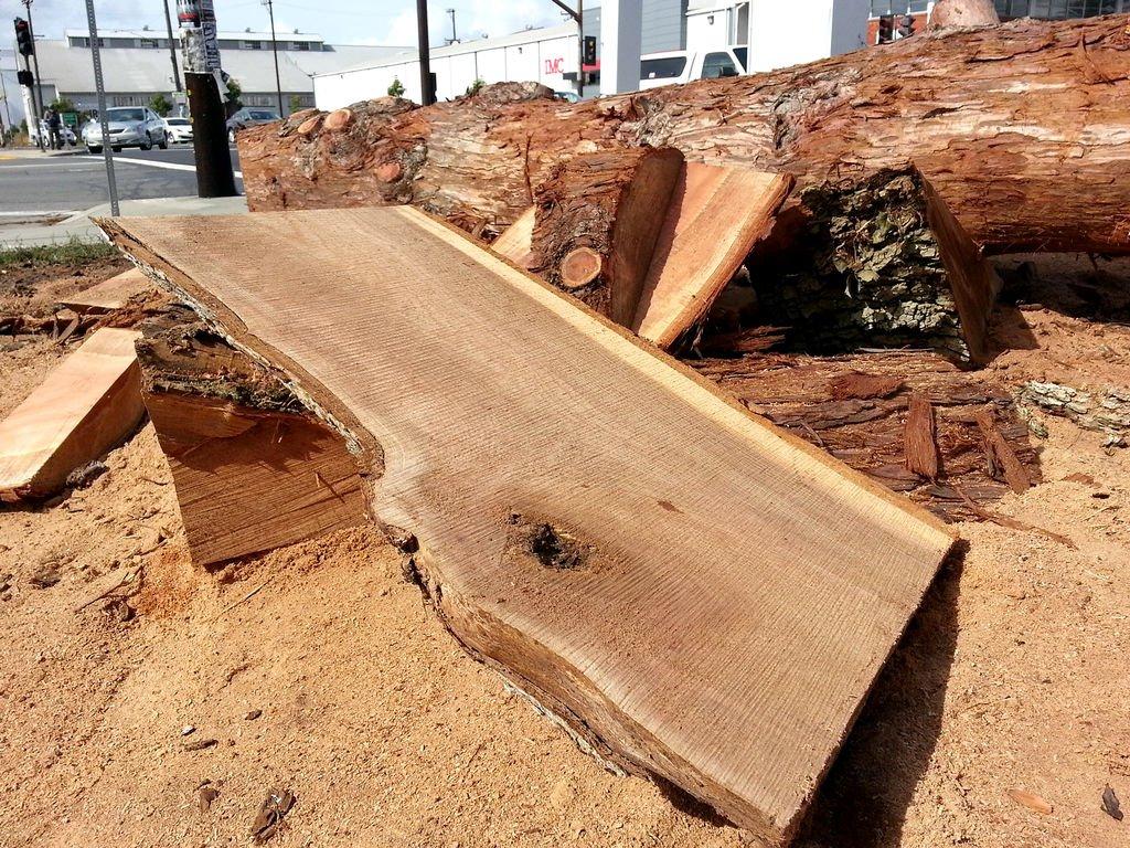 Журнальный столик из ствола дерева своими руками