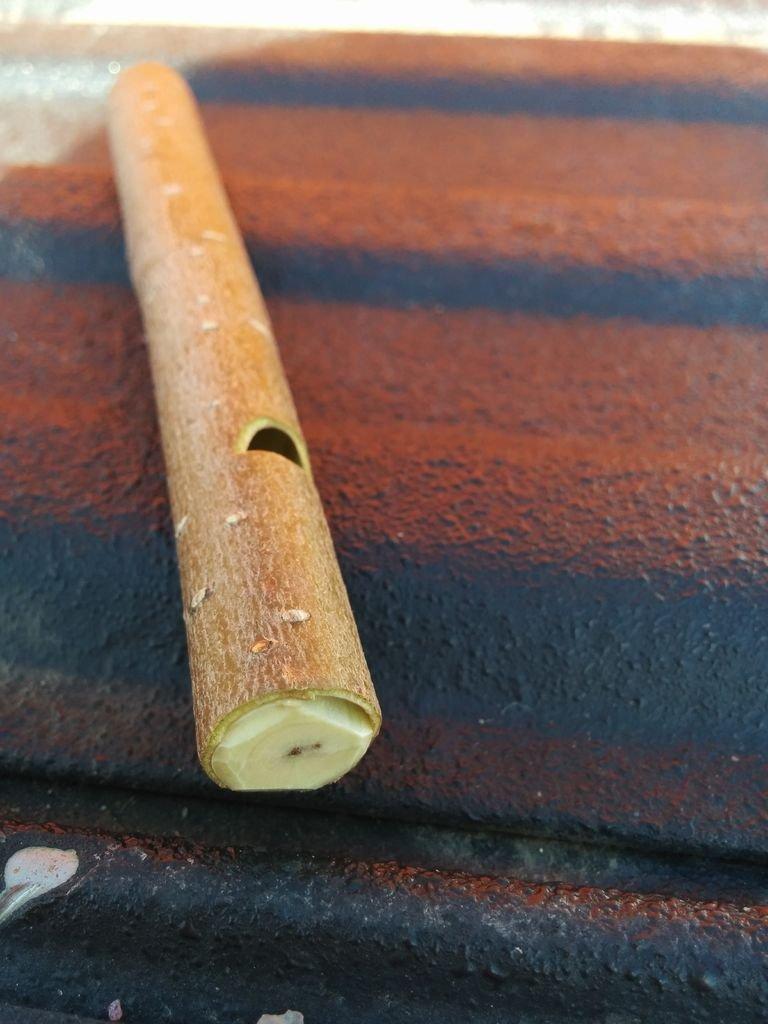 Свисток из веточки дерева своими руками
