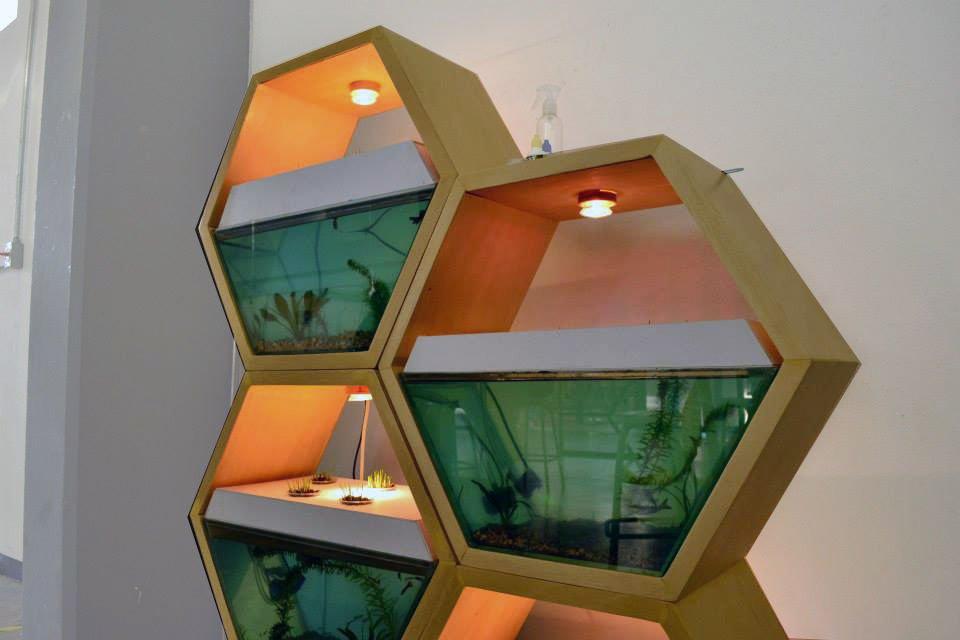 Модульный аквариум своими руками