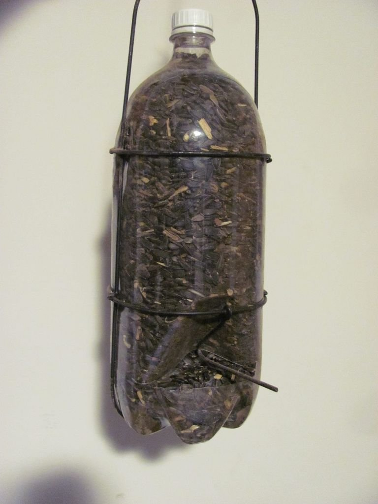 Кормушка из пластиковой бутылки для птиц