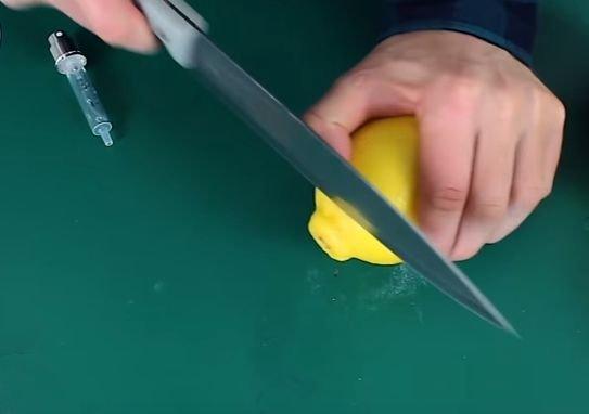 Распылитель для цитрусовых своими руками