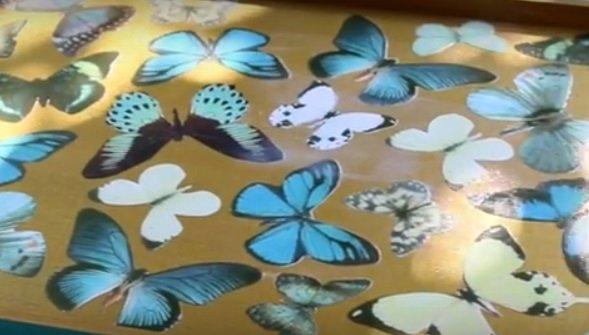 Поднос с бабочками своими руками