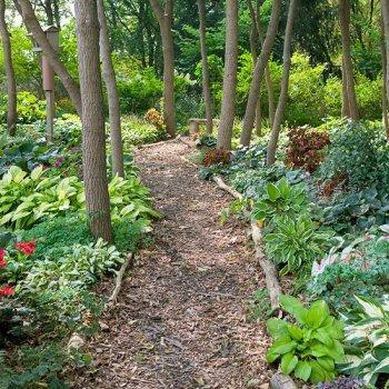 Садовые дорожки из подручных материалов