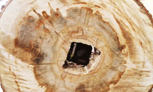 Часы из спила дерева своими руками