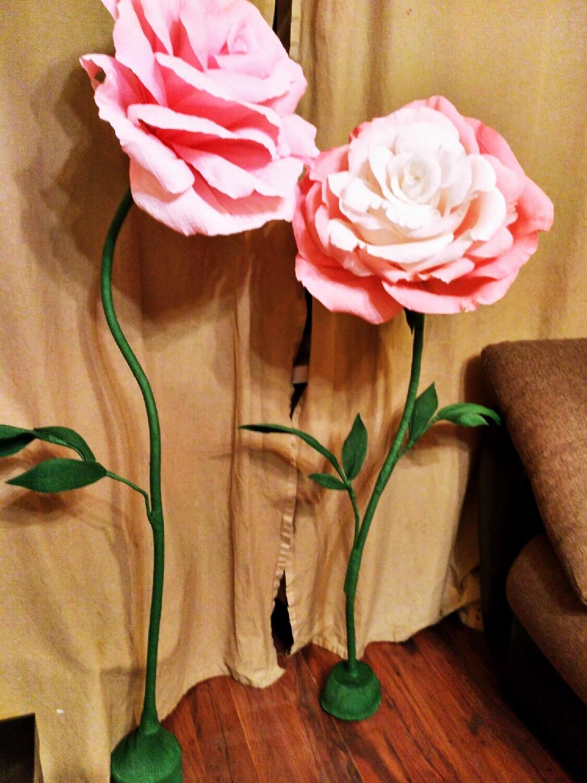 цветы гигантских размеров