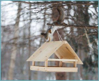 Кормушки для птиц из подручных материалов - оригинальные идеи